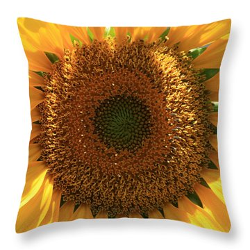 Sunflower  Throw Pillow by Marna Edwards Flavell