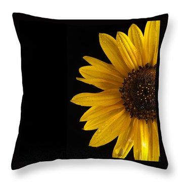 Sunflower Number 3 Throw Pillow by Steve Gadomski