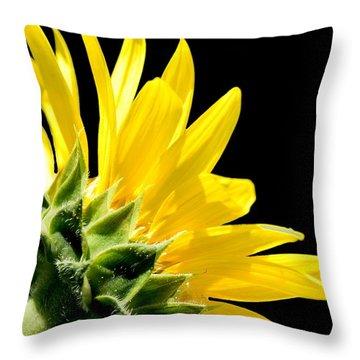 Sunflower On Black Throw Pillow