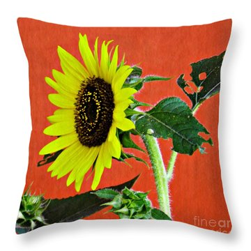 Throw Pillow featuring the photograph Sunflower On Red 2 by Sarah Loft
