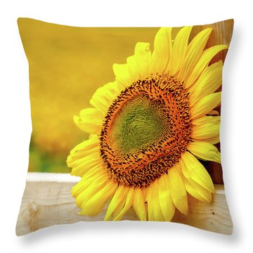 Sunflower On The Fence Throw Pillow