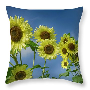 Sunflower Party Throw Pillow