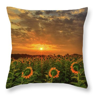 Sunflower Peak Throw Pillow