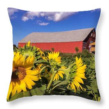 Sunflower Red Barn Throw Pillow