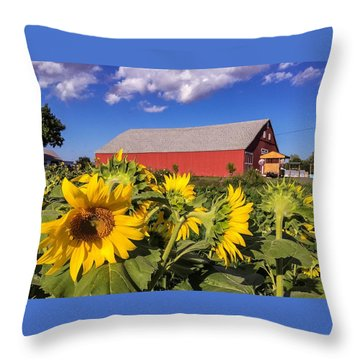 Sunflower Red Barn Throw Pillow