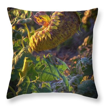 Sunflower Repose Throw Pillow
