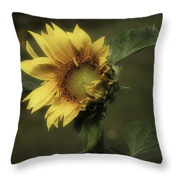 Sunflower Romantica Throw Pillow