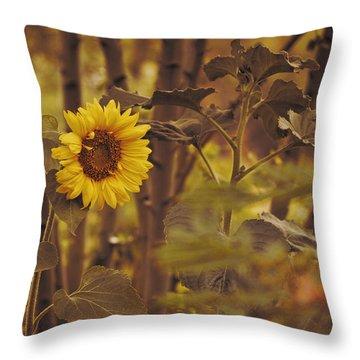 Sunflower Sentry Throw Pillow