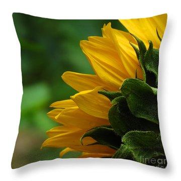 Sunflower Series I Throw Pillow