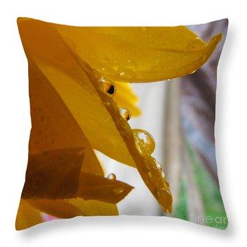 Sunflower Series II Throw Pillow
