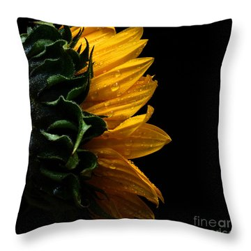 Sunflower Series IIi Throw Pillow