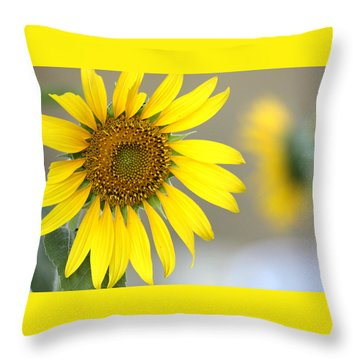 Throw Pillow featuring the photograph Sunflower by Sheila Brown