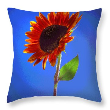 Throw Pillow featuring the photograph sunflower Solitaire by Joyce Dickens