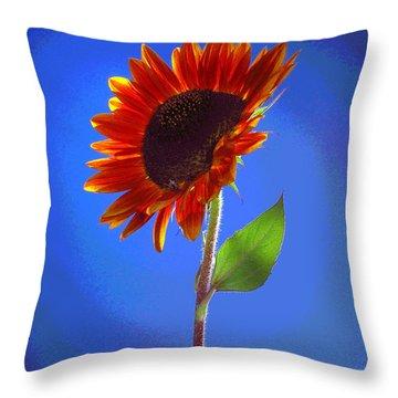 sunflower Solitaire Throw Pillow