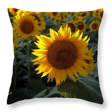 Sunflower Standout Throw Pillow