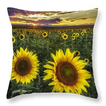 Sunflower Sunset Throw Pillow by Kristal Kraft