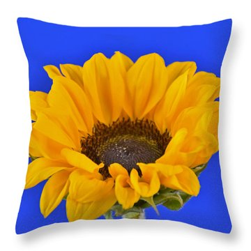 Sunflower Sunshine 406-6 Throw Pillow