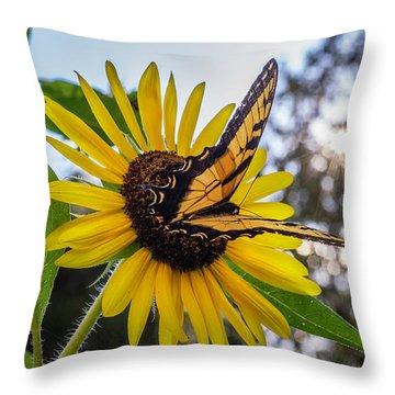 Sunflower Swallowtail Throw Pillow