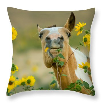 Sunflower Thief Throw Pillow