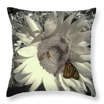 Sunflower Tint Throw Pillow