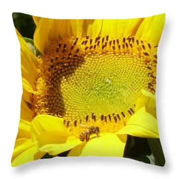Sunflower With Honeybee Throw Pillow