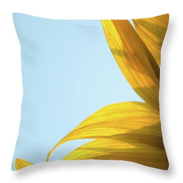 Throw Pillow featuring the photograph Sunflowers 11 by Andrea Anderegg