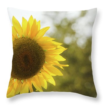Throw Pillow featuring the photograph Sunflowers 12 by Andrea Anderegg