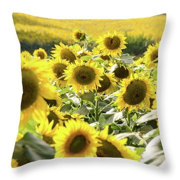 Throw Pillow featuring the photograph Sunflowers 13 by Andrea Anderegg