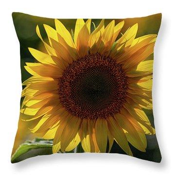Sunflowers 6 Throw Pillow