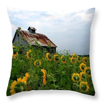 Sunflowers Along Rt 6 Throw Pillow