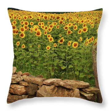 Sunflowers And Fence   Throw Pillow