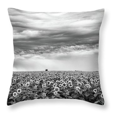 Sunflowers And Rain Showers Throw Pillow by Penny Meyers