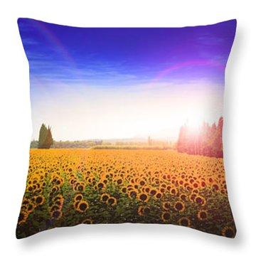 Sunflowers Await The Morning Sun Throw Pillow