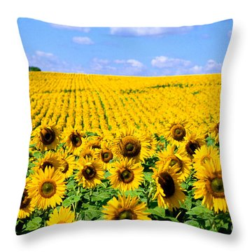Sunflowers Throw Pillow by Bill Bachmann and Photo Researchers