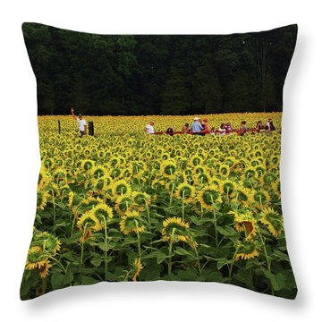 Sunflowers Everywhere Throw Pillow