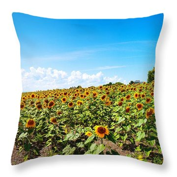 Throw Pillow featuring the photograph Sunflowers In Ithaca New York by Paul Ge