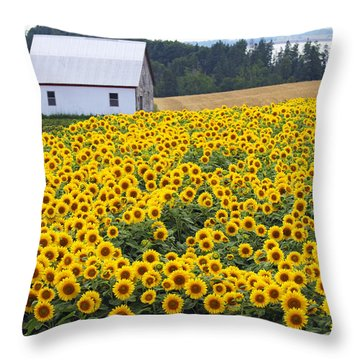 sunflowers in PEI Throw Pillow