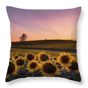 Sunflowers In Pink Throw Pillow