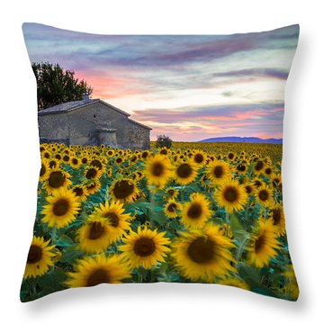 Sunflowers In Provence Throw Pillow