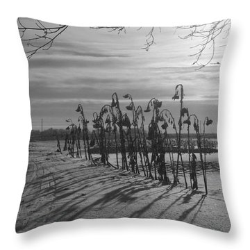 Sunflowers In The Winter Sun Throw Pillow by Mary Mikawoz