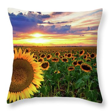 Sunflowers Of Golden Hour Throw Pillow