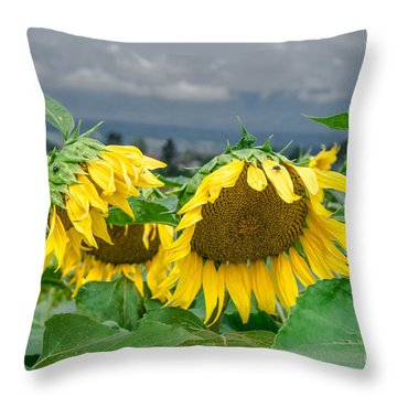 Sunflowers On A Rainy Day Throw Pillow by Michelle Meenawong