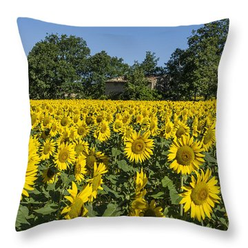 Throw Pillow featuring the photograph Sunflowers Provence  by Juergen Held