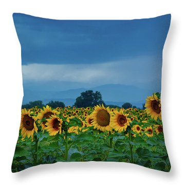 Sunflowers Under A Stormy Sky Throw Pillow
