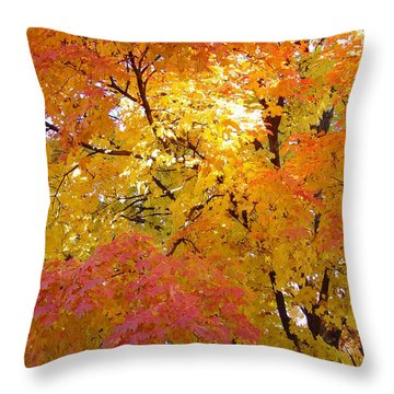 Throw Pillow featuring the photograph Sunkissed 2 by Elizabeth Sullivan
