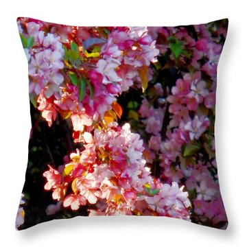 Sunkissed Petals Throw Pillow