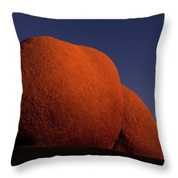Sunkissed Revisited Throw Pillow