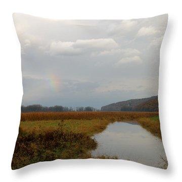 Sunless Rainbow Throw Pillow