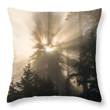 Sunlight And Fog Throw Pillow
