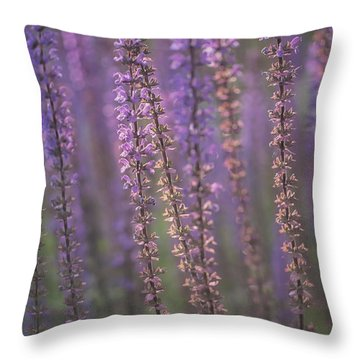 Sunlight On Lavender Throw Pillow by Jacqui Boonstra